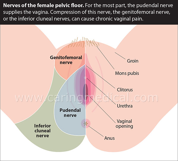 vaginal causes of soreness