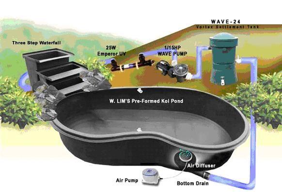 bottom w lim drains