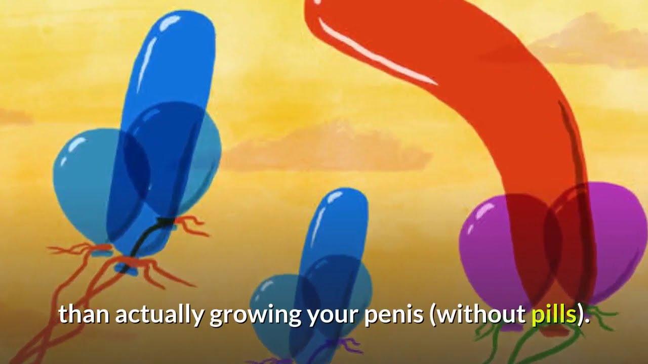 enlargers work that penis